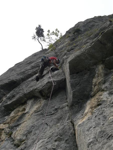 Nikotina, climbing